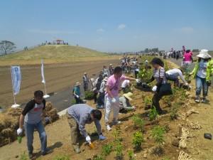植樹活動中の写真