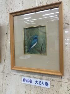 IMG_5644③