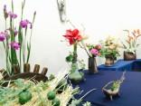 「粘土の花」ロビー展を開催しています!