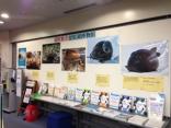ご存知ですか?「滋賀県立琵琶湖博物館」