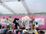 第14回 目黒イーストエリアさくら祭りに参加しました!