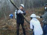 「佐波川流域大平山ふれあいの森づくり」に参加しました!