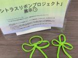 松山支店は「シトラスリボンプロジェクト」に賛同します!
